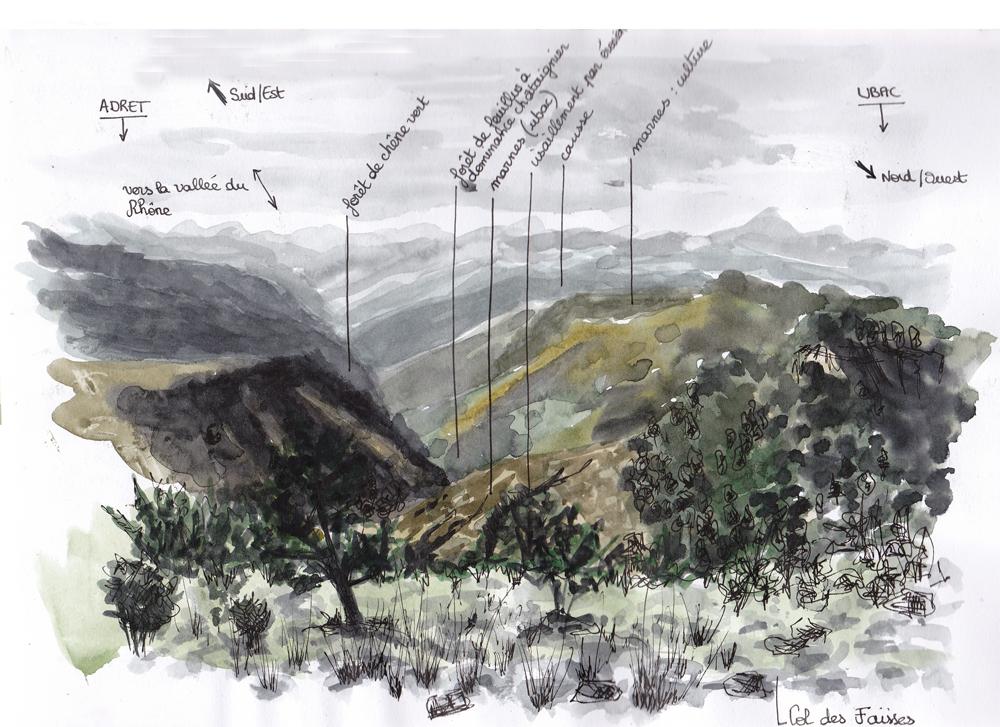 paysagiste clermont ferrand dessin sur site 10