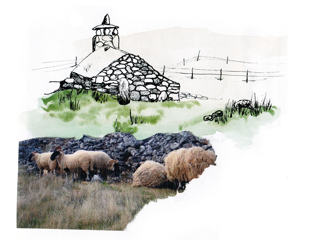 paysagiste clermont ferrand dessin sur site 7