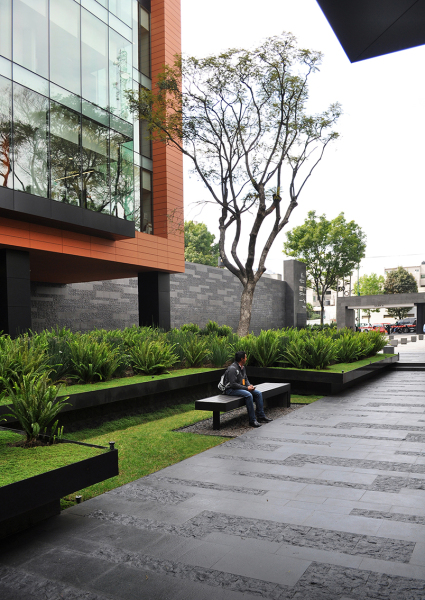 calepinage coyoacan corporate campus