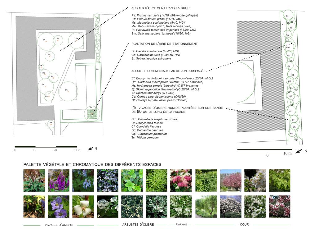 La densité comme moyen de retrouver une cohérence paysagiste Clermont-Ferrand 2