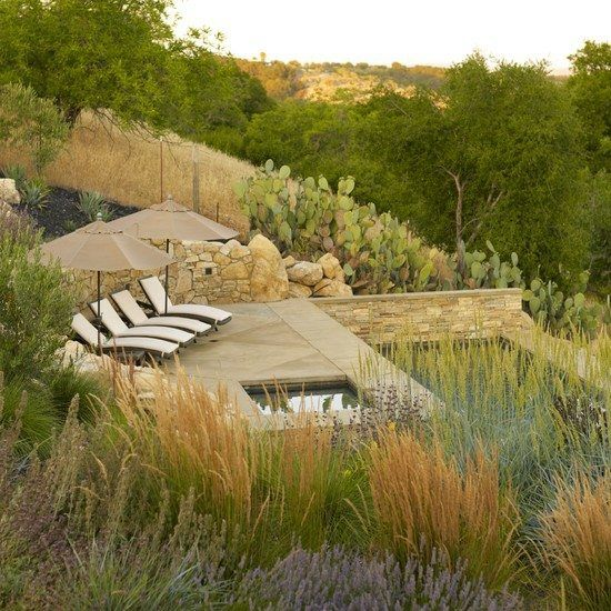 piscine jardin naturel paysagiste Clermont-Ferrand